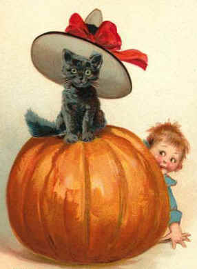 black cat and baby with pumpkin
